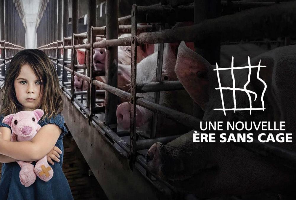 Événement : fin de l'ICE contre les cages