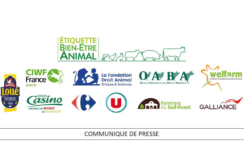 AVANCÉE : L'étiquetage bien-être animal se généralise en France